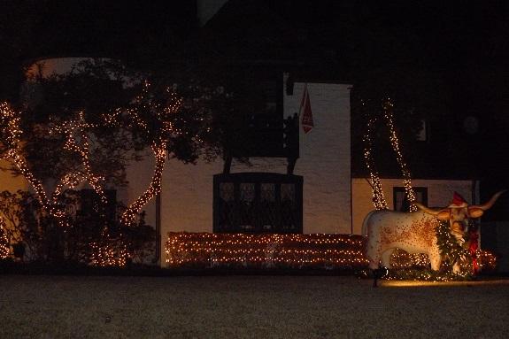 Fav xmas lights 12 2013