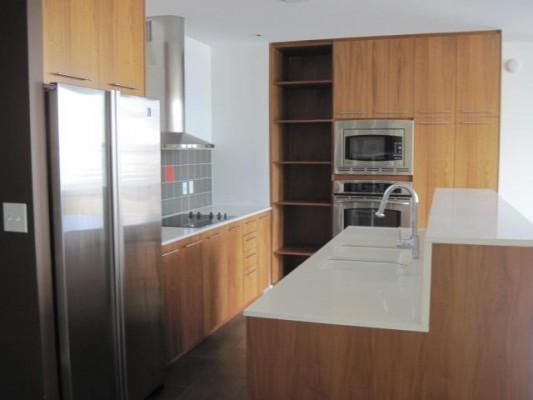 Terrace 604 Kitchen